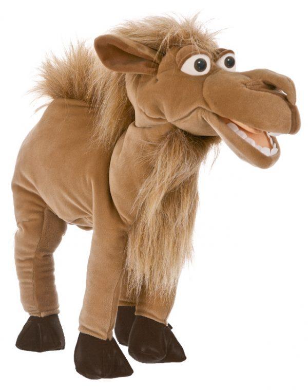 Kalle das Kamel
