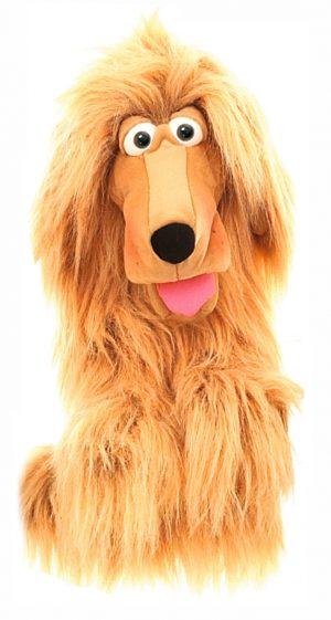 Lulu die Hundedame