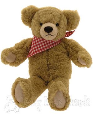 teddy-bear-manuel_